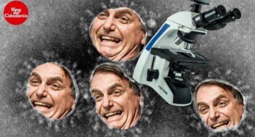 """Número de mortos pelo Covid-19 chega a 31.417; Bolsonaro diz que """"é o destino de todo o mundo"""" e veta ajuda aos estados"""